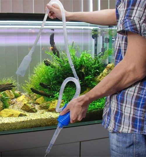 Tips Tips Menguras Air Akuarium Mudah Dan Simpel Gerava Ikan Hias Burung Kicau Kucing Anjing