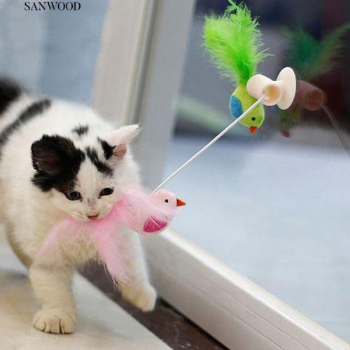 Mainan kucing