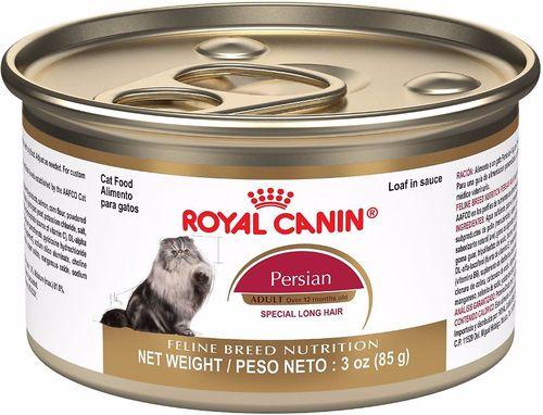 Makanan basah terbaik untuk kucing Persia