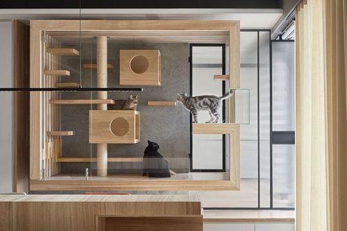 20 Desain Kandang Kucing Dari Yang Simpel Sampai Tingkat Gerava Ikan Hias Burung Kicau Kucing Anjing